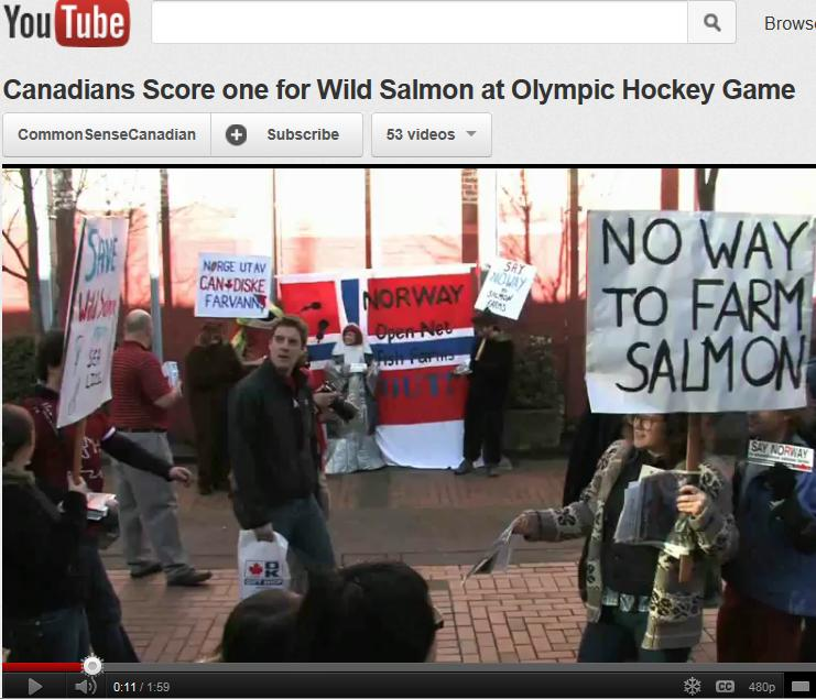 Norway olympics video 2