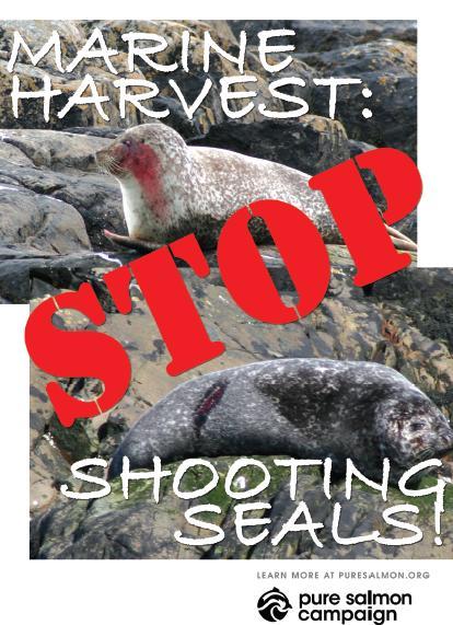 MH stop shooting