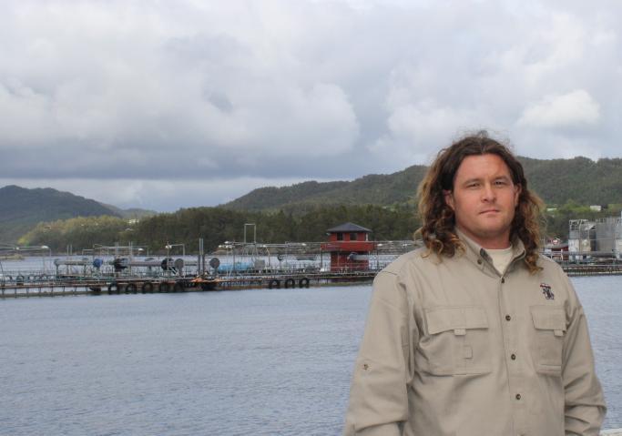 Hardangerfjord #11
