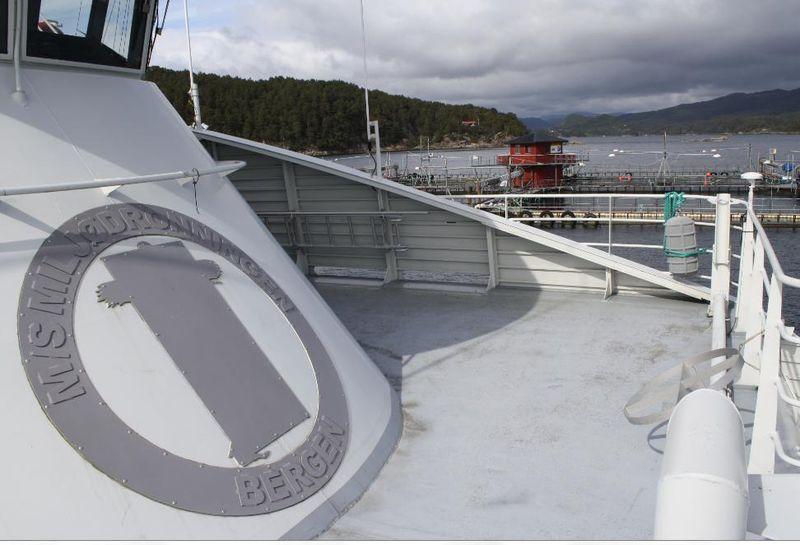 Hardangerfjord #10
