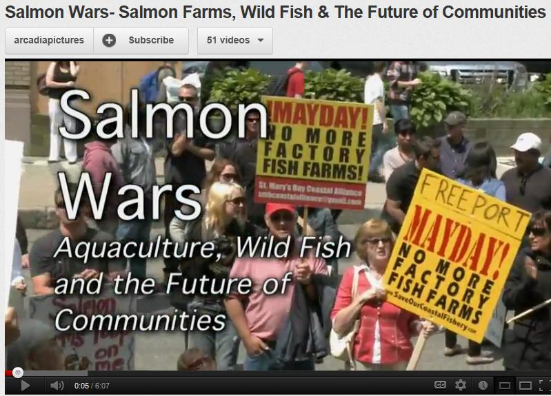 Salmon wars trailer