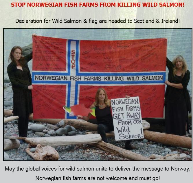 Wild Salmon First flag