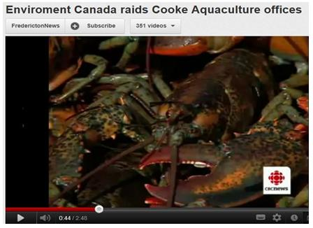 CBC on Env Canada raid on Cooke 2010