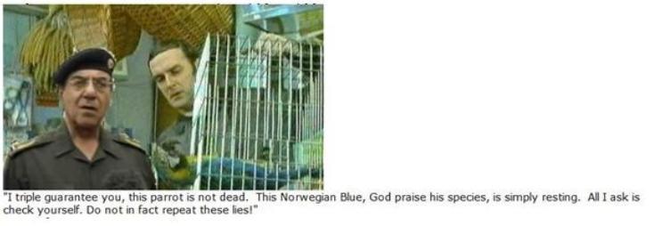 Norwegian Blue #1
