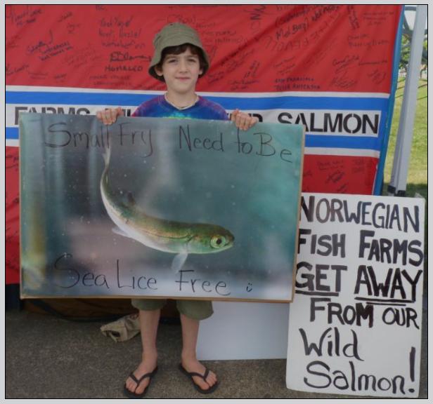 Wild salmon first #10
