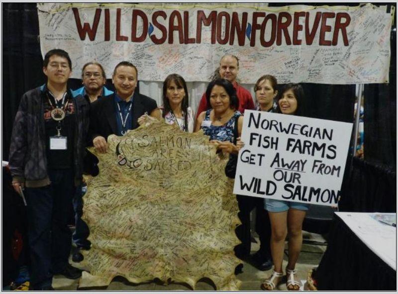 Wild salmon first #14
