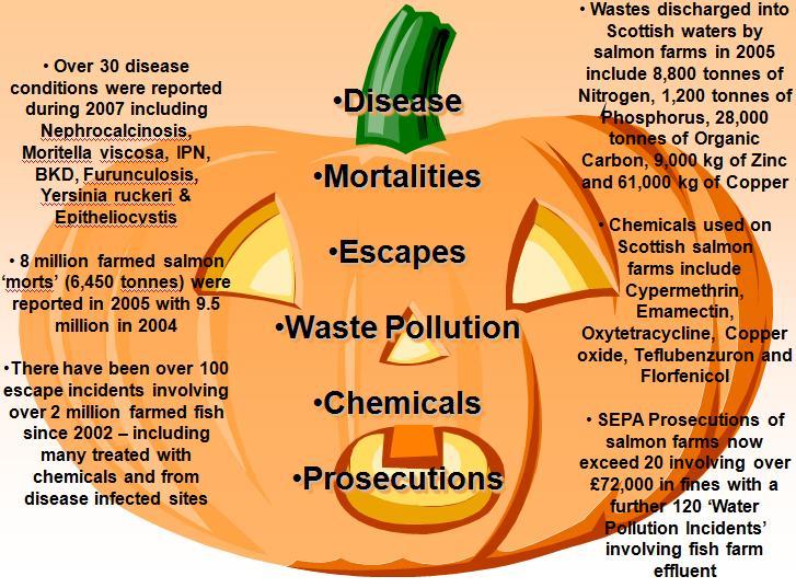 Halloween #21 pumpkin PSC