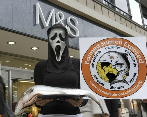 Halloween #14 M&S scream