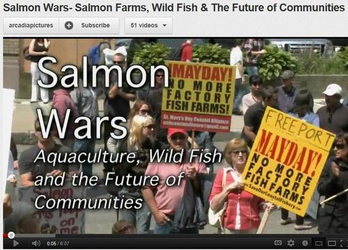 Salmon wars trailer