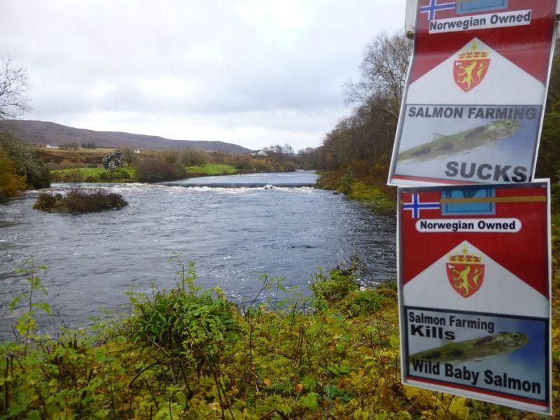 River Snizort #1