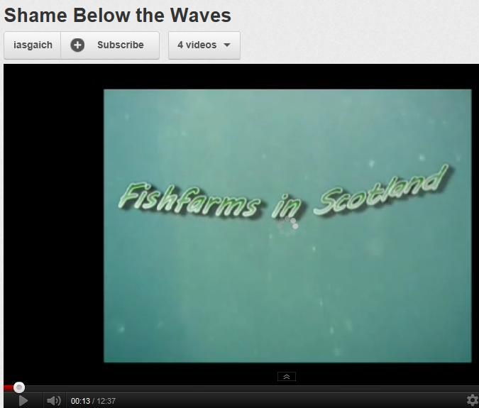 Shame Below the Waves