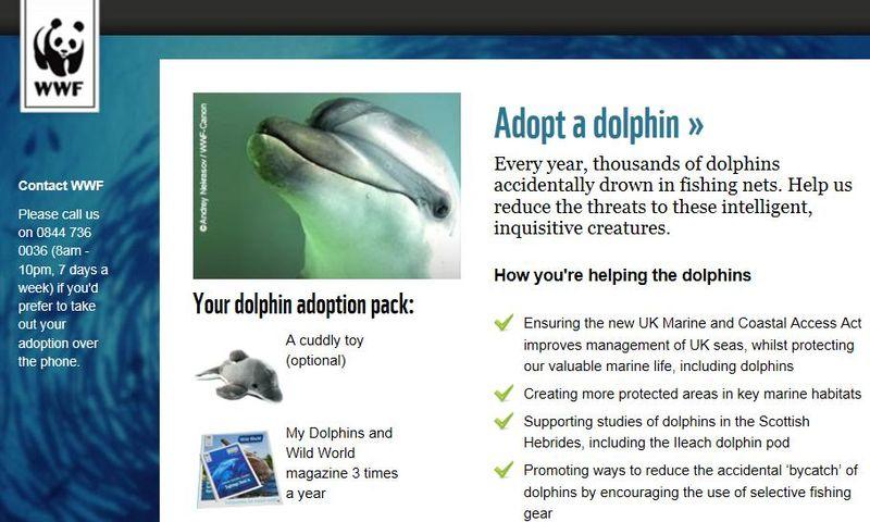 WWF dolphin