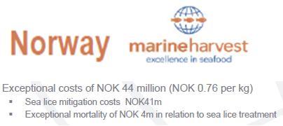 MH sea lice norway