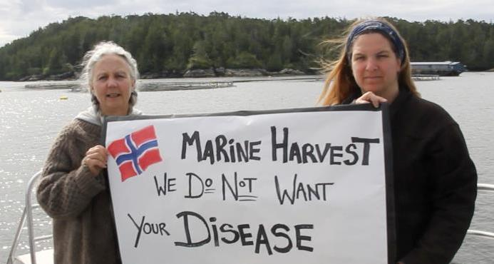 Marine Harvest we do not want your disease Alex & Anissa lowest res