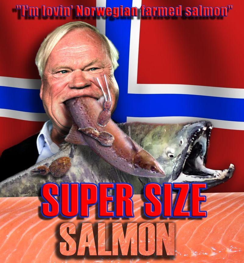Super Size Salmon film poster