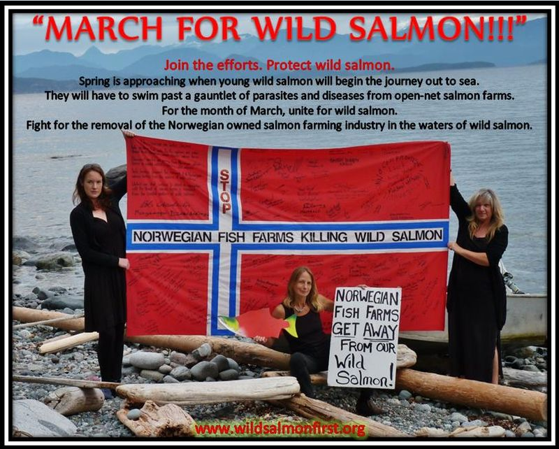 Wild Salmon First March for Wild Salmon #3