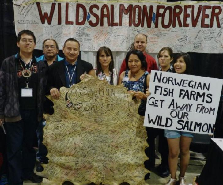 Wild salmon first #18 Grand Chief Stewart Phillip