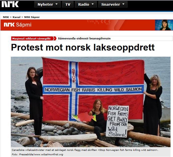 NRK on March for Wild Salmon 21 Feb 2013