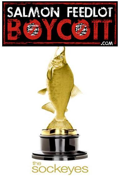 Sockeyes salmon feedlot boycott