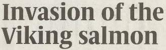 Sunday Times Viking Invasion headline