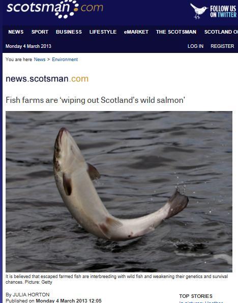 Scotsman 4 March 2013 #1