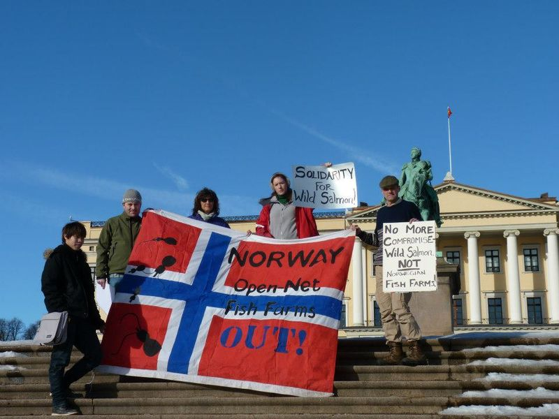 Solidarity for Salmon outside Norwegian palace