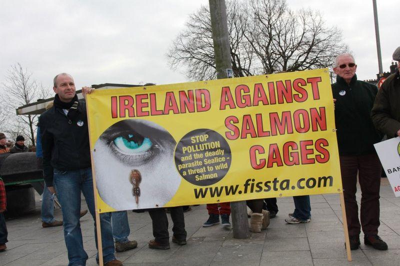 FISSTA Ireland against salmon cages