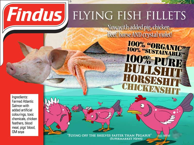 Findus Flying Fish Fillets 100%