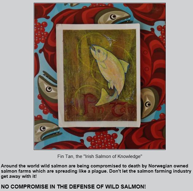 Wild salmon first #6 Fin Tan