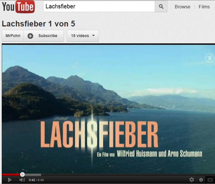 Blog #29 Lachsfieber