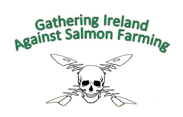 Gathering Ireland Against Salmon farming