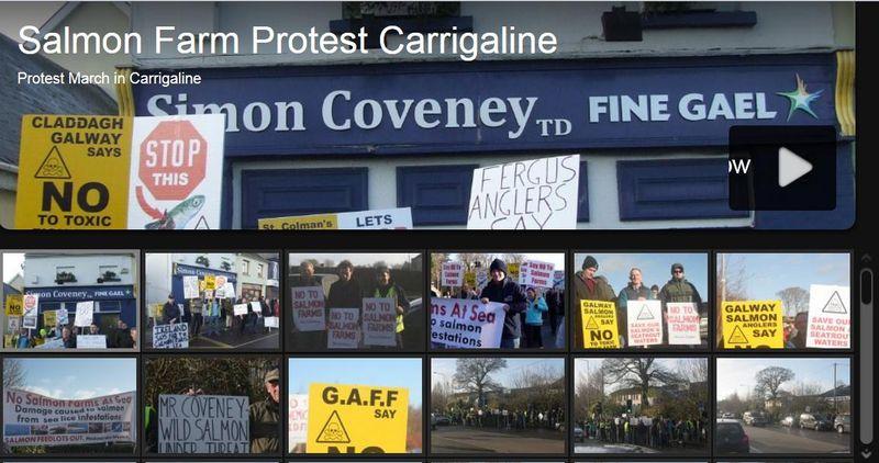Carrigaline photo blog