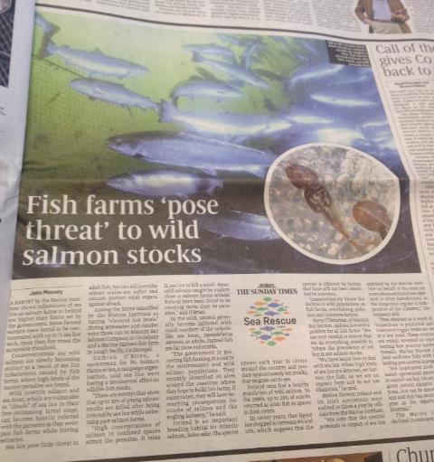 Sunday Times Ireland 16 Dec 2012 #2
