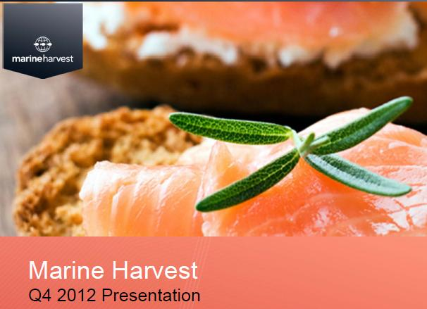 MH Q4 2012 presentation #2