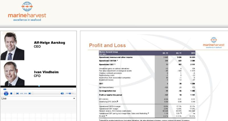 Blog #23 profit loss