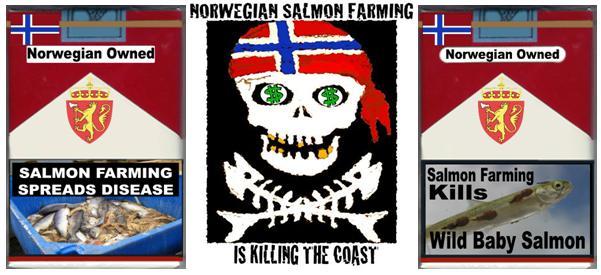 3 pack killing the coast disease sea lice