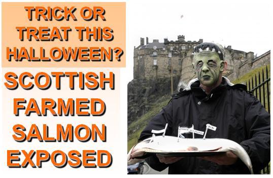 Halloween #22 GWOA Frankenstein