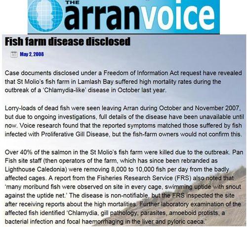 Arran Voice May 2 2008 #1