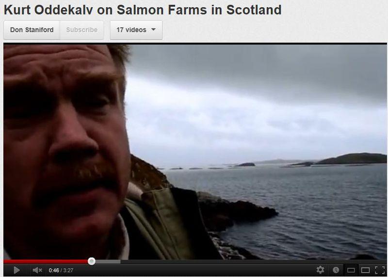 Kurt video from Scotland