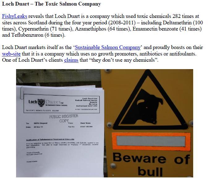 Toxic Salmon Company #1