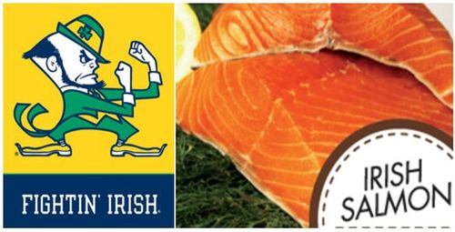 Fighting irish salmon