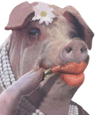 Lipstick on a pig #3