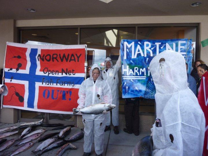 Marine Harmfest
