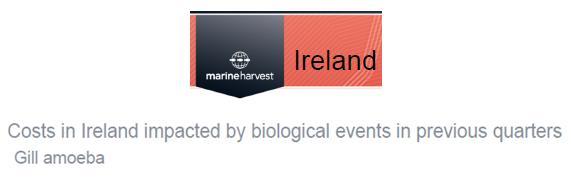Q4 2012 presentation summary #3 Ireland