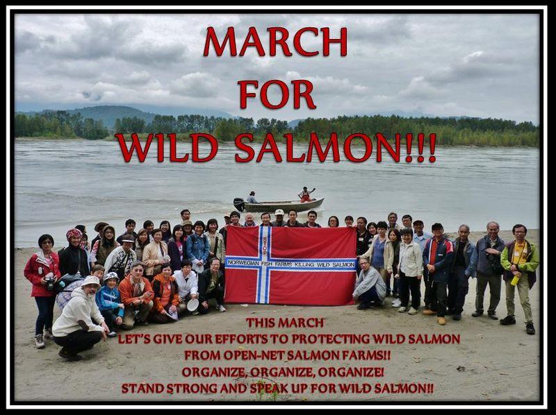 Wild Salmon First March for Wild Salmon #2