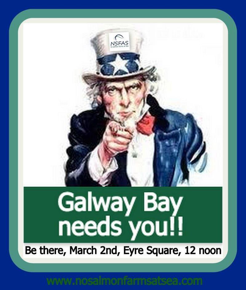 Galway Bay poster NSFAS