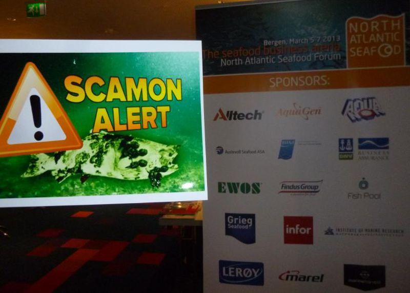 Photo #1 Scam alert