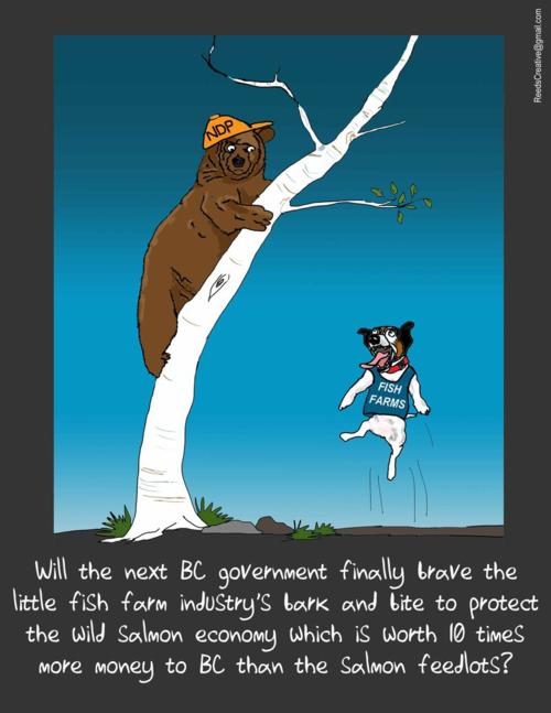 NDP bark bite cartoon