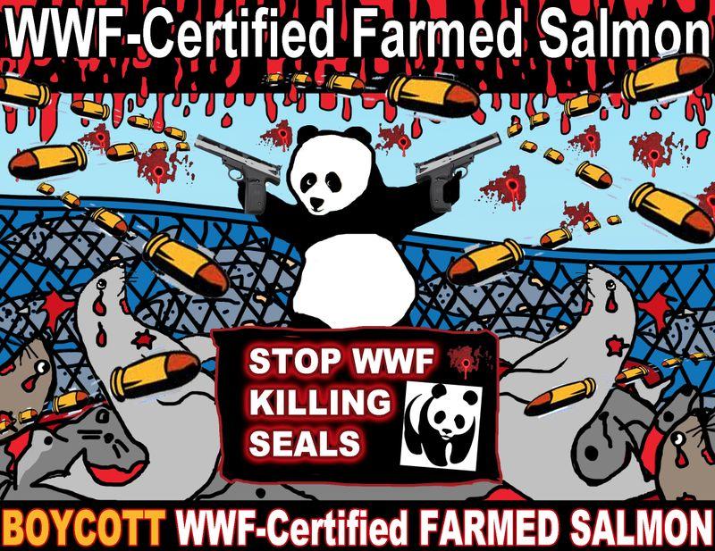 WWF panda shooting graphic