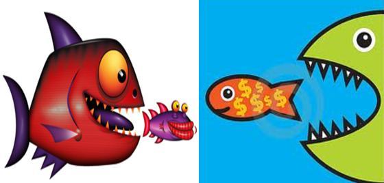 Big fish big fish
